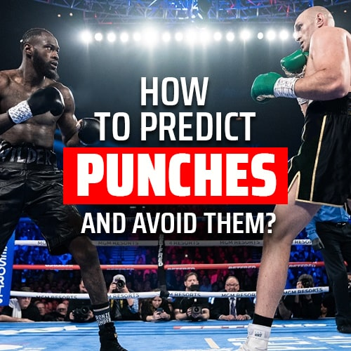 Hands of stone in boxing: How to Predict Punches and avoid them?