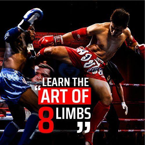 art of 8 limbs